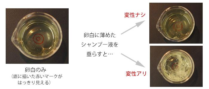 卵白の実験で頭皮に優しいシャンプーを検証