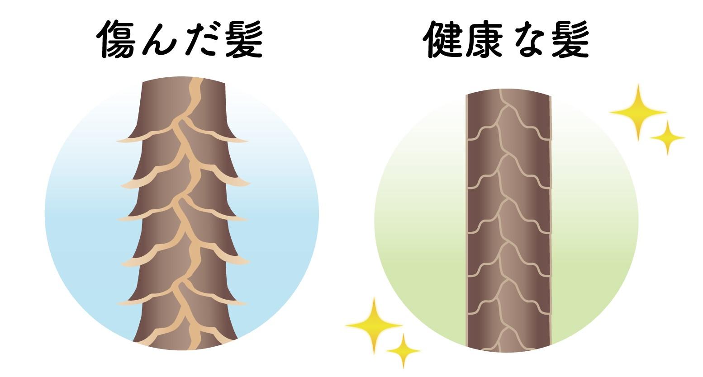 キューティクルが傷んだ髪と健康な髪の解説図