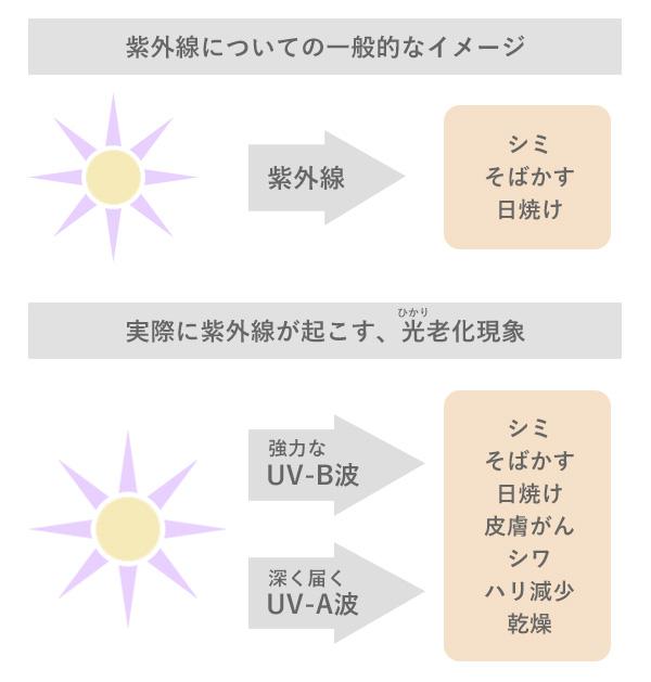 光老化は、紫外線が一般的に知られているすシミ・日焼けなどの影響以上に、光老化現象として皮膚がんやシワ・たるみ・ハリ減少などの多くの影響があることがわかっています